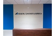 africa lindsey 3 dimensional 3d custom paint acrylic sign install DTLA direct mount
